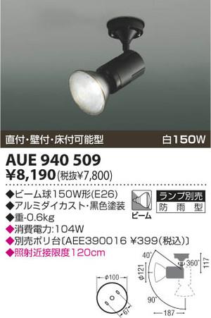 Aue940509